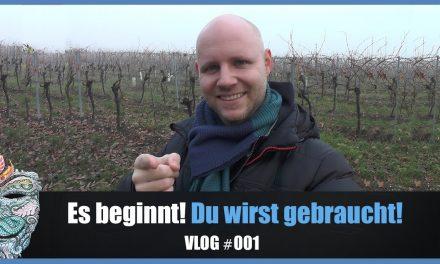 Es beginnt! Du wirst gebraucht! #WhoKnows Vlog #001
