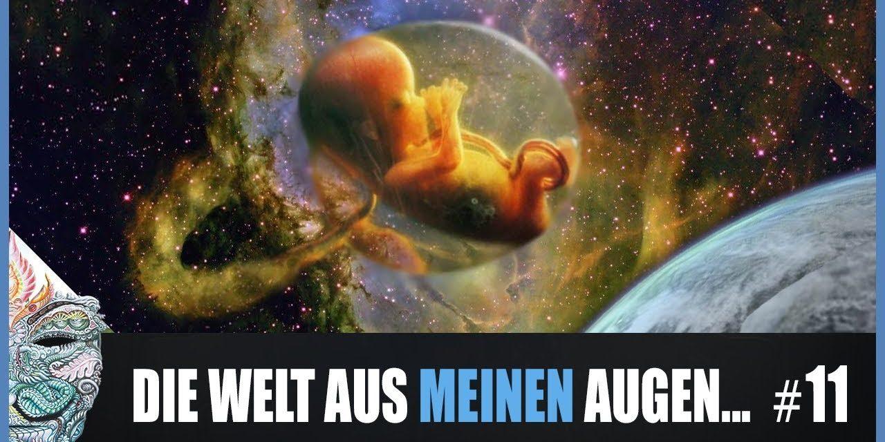 Die Welt aus meinen Augen #11 ►Wir erwarten die Ankunft des Reisenden 👼#Nachwuchs #GöttlicherSpiegel